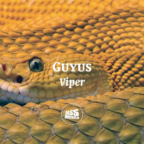 guyus_viper_new_500x500