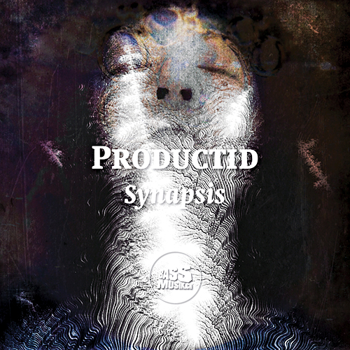 productid-synapsis-cover_500x500
